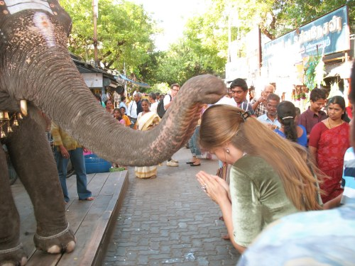 Pooja blir välsignad av en elefant utanför Ganeshas tempel i Pondicherry