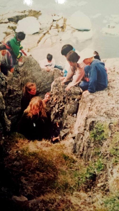 En vägg av musselskallampor